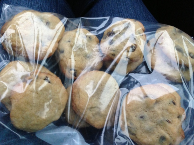 Have deliciousness; will travel.  Fresh baked range cookies en route to a match.