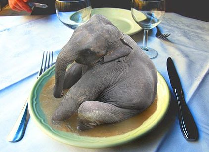 Mmm...elephant.  Deeee-licious!